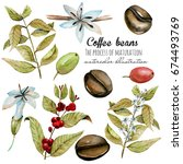 set of watercolor coffee... | Shutterstock . vector #674493769