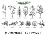 natural cosmetics. vector hand... | Shutterstock .eps vector #674494294