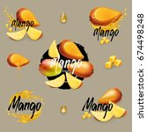mango collection with fruits ...   Shutterstock .eps vector #674498248