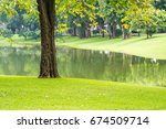 green grass  tree  water in... | Shutterstock . vector #674509714