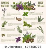 culinary herb and spice...   Shutterstock .eps vector #674568739