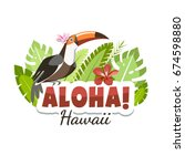 hawaii aloha toucan message... | Shutterstock .eps vector #674598880
