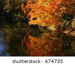 Autumn brilliance - stock photo