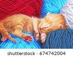 new born baby cat sleeping.... | Shutterstock . vector #674742004