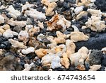 lava stone las tintoreras...   Shutterstock . vector #674743654
