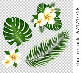 palm and monstera tree leaf ... | Shutterstock .eps vector #674747758