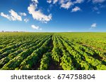 green field and beautiful sunset | Shutterstock . vector #674758804