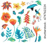 Set Of Tropical Plants With...