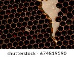 honey that flows on the wax     ... | Shutterstock . vector #674819590