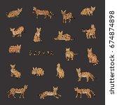 serval cat animal vector doodle ... | Shutterstock .eps vector #674874898