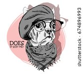 vector dog with grey beret and... | Shutterstock .eps vector #674896993
