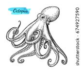 octopus ink sketch. isolated on ... | Shutterstock .eps vector #674927590