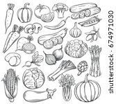 vector hand drawn vegetables... | Shutterstock .eps vector #674971030