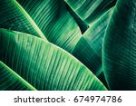Tropical Leaf  Large Palm...