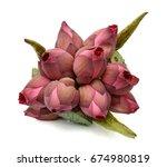 beautiful lotus flower bouquet... | Shutterstock . vector #674980819