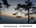 big trees on the cliffs at... | Shutterstock . vector #675054934