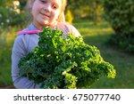 child holding organic kale... | Shutterstock . vector #675077740
