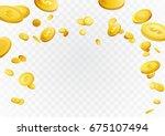 Fortune Golden Dollar Coins...