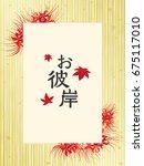 cluster amaryllis flower vector ... | Shutterstock .eps vector #675117010