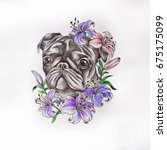 sketch of pug in flowers on a... | Shutterstock . vector #675175099
