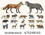gorilla  moose or eurasian elk  ... | Shutterstock .eps vector #675248143