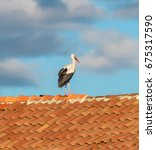 Small photo of Lonely storks stand on the roof of a village house - Banya, Bulgaria
