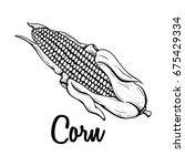 sketch or hand drawn ripe corn... | Shutterstock .eps vector #675429334