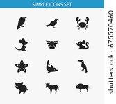 set of 12 editable zoology... | Shutterstock .eps vector #675570460