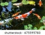 Colorful Decorative Fish Float...