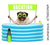 smiling summer pug dog with...   Shutterstock . vector #675601969