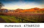 a landscape view of sonoma... | Shutterstock . vector #675685210