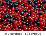 currant black and red. berries... | Shutterstock . vector #675698503