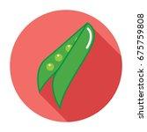 bean icon. flat bean icon. bean ... | Shutterstock .eps vector #675759808