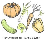 graphic agricultural harvest of ... | Shutterstock .eps vector #675761254