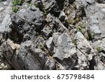 Small photo of the rocky texture of the rock surface with inhomogeneous surface and plants growing in the cracks of the rock