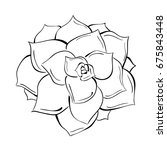 hand drawn vector illustration... | Shutterstock .eps vector #675843448