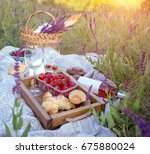 Summer   Picnic In The Meadow....