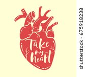 take my heart sign. anatomical... | Shutterstock .eps vector #675918238
