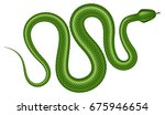 green tree python vector... | Shutterstock .eps vector #675946654
