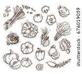 fresh vegetables vector set can ... | Shutterstock .eps vector #676019059
