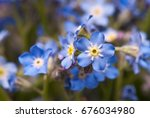 the photos are beautiful...   Shutterstock . vector #676034980