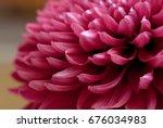 beautiful background of fresh...   Shutterstock . vector #676034983