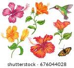 set of hibiscus flower with... | Shutterstock . vector #676044028
