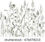hand sketched meadow grass | Shutterstock .eps vector #676078213