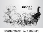 goose of the particles. goose... | Shutterstock .eps vector #676189834