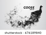 goose of the particles. goose... | Shutterstock .eps vector #676189840