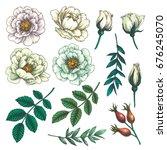 Stock vector set of dog rose vintage botanical hand drawn illustration of briar flowers buds berries and 676245070