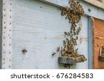 honey bees are grouped on the... | Shutterstock . vector #676284583