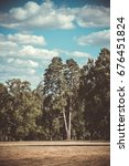 field meadow trees pine trees... | Shutterstock . vector #676451824