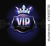 vip card with platinum elements | Shutterstock . vector #676503730